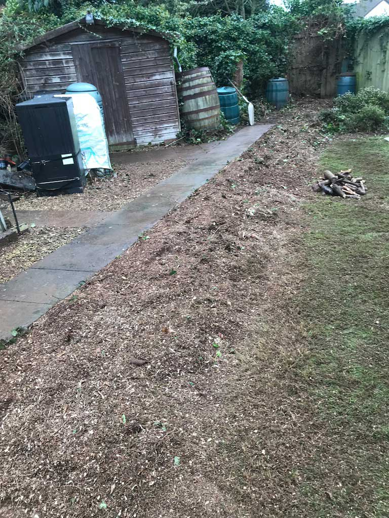 Stump Grinding After